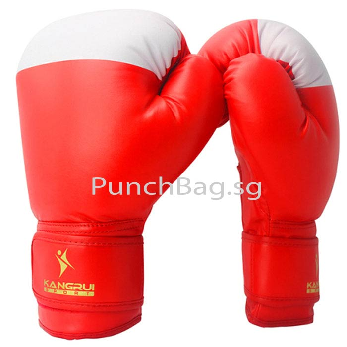 Sparring Glove